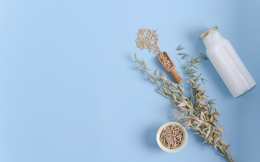 Oat milk, spikelets of oats and oatmeal lies on a blue background.