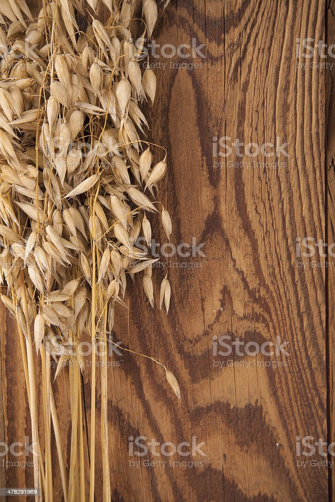 Oat on wood royalty-free stock photo