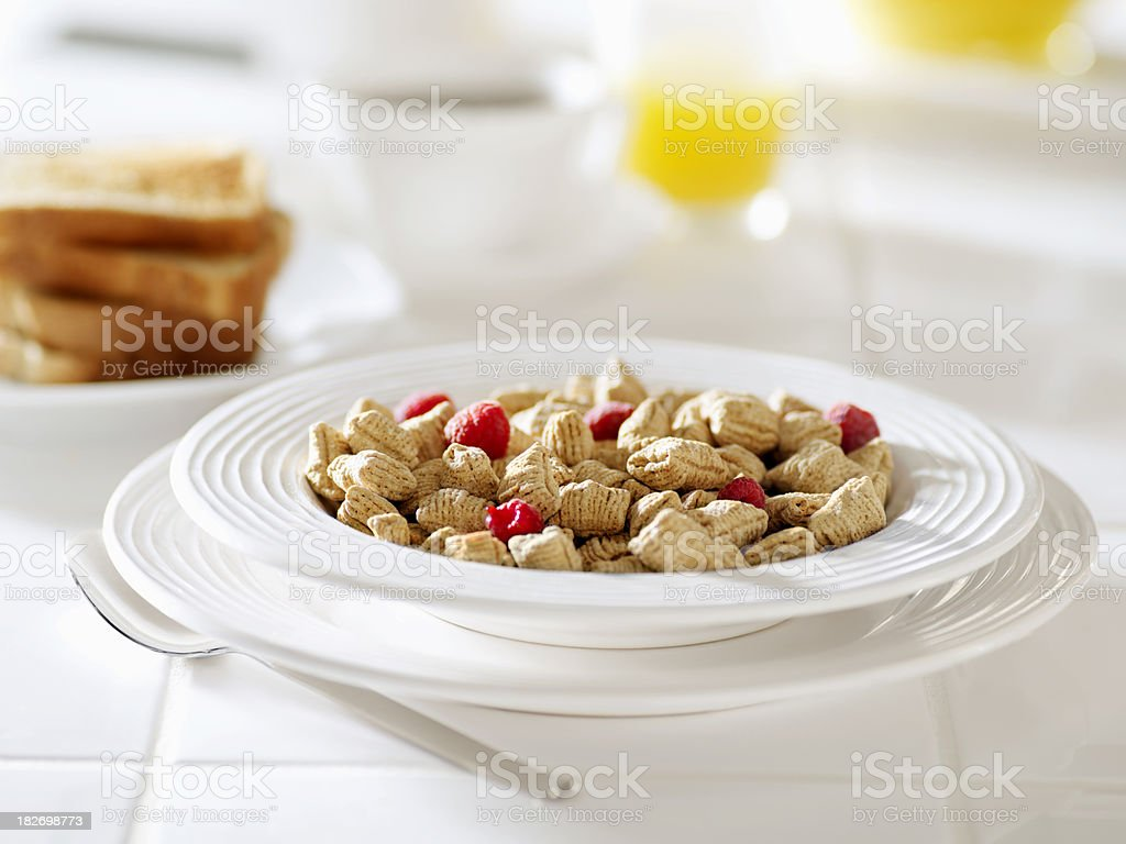 Oat Squares Breakfast Cereal with Fruit royalty-free stock photo