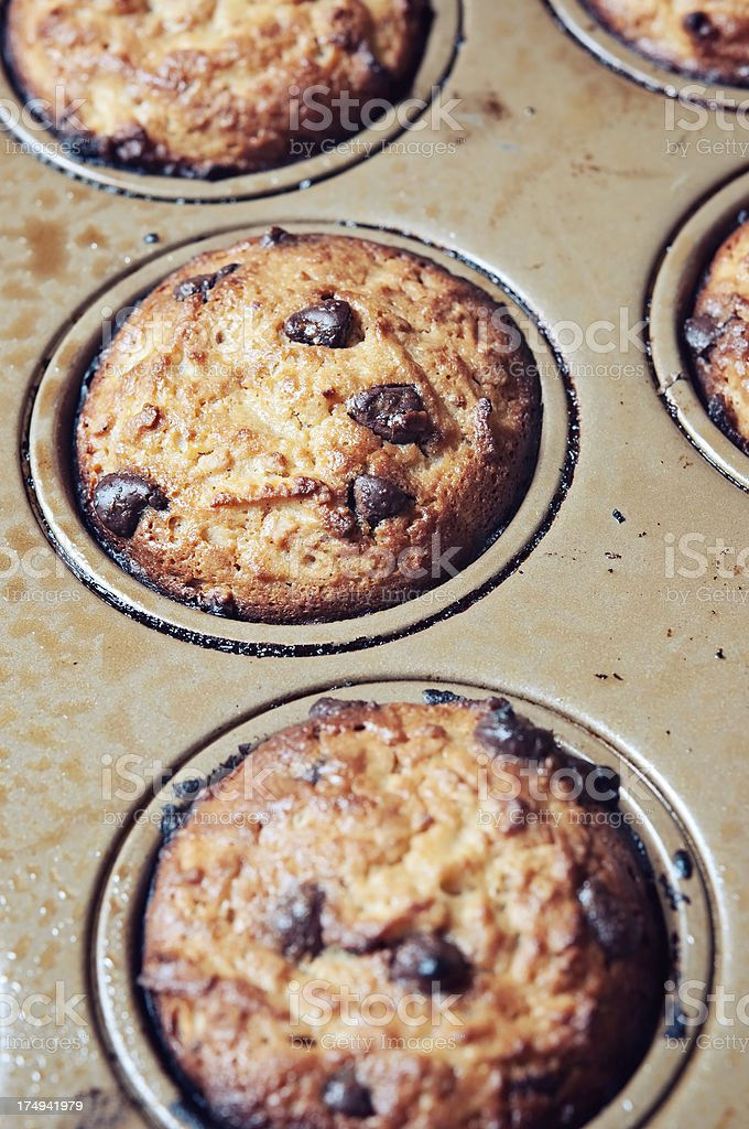 Oatmeal Chocolate Chip Muffins in Tin Pan royalty-free stock photo