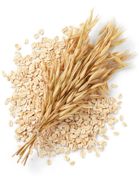 oats bundle of oat plant with oatmeal isolated on white oat crop stock pictures, royalty-free photos & images