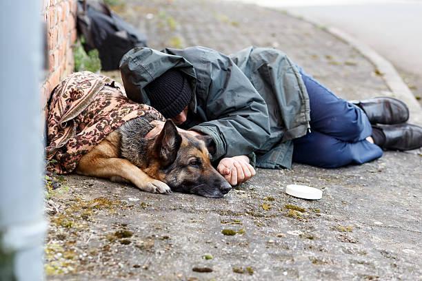 Obdachloser mann mit seinem hund picture id530948868?b=1&k=6&m=530948868&s=612x612&w=0&h=76zspm3ibn7vd4y ezs7jmeq ffw8ndo4regh62gyry=
