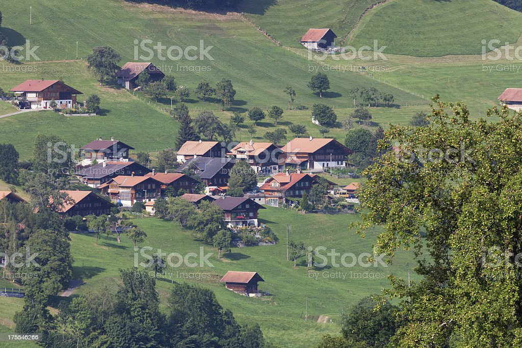Oberwil, Bernese Oberland, Hazy Summer Afternoon royalty-free stock photo