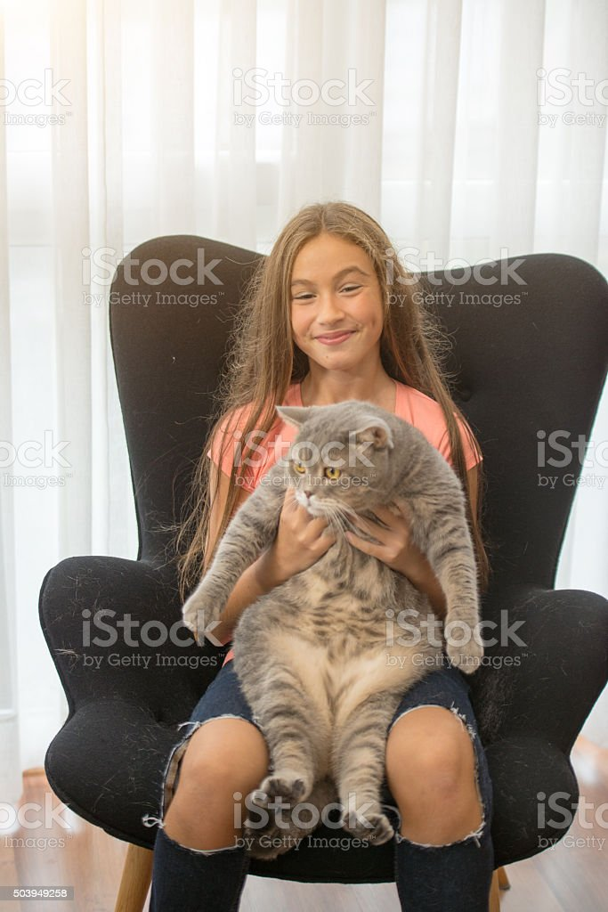 obese cat and her owner stock photo