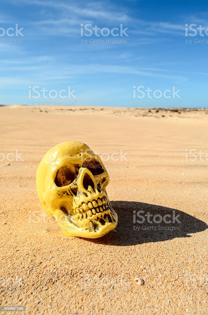 Object in the Dry Desert royalty-free stock photo