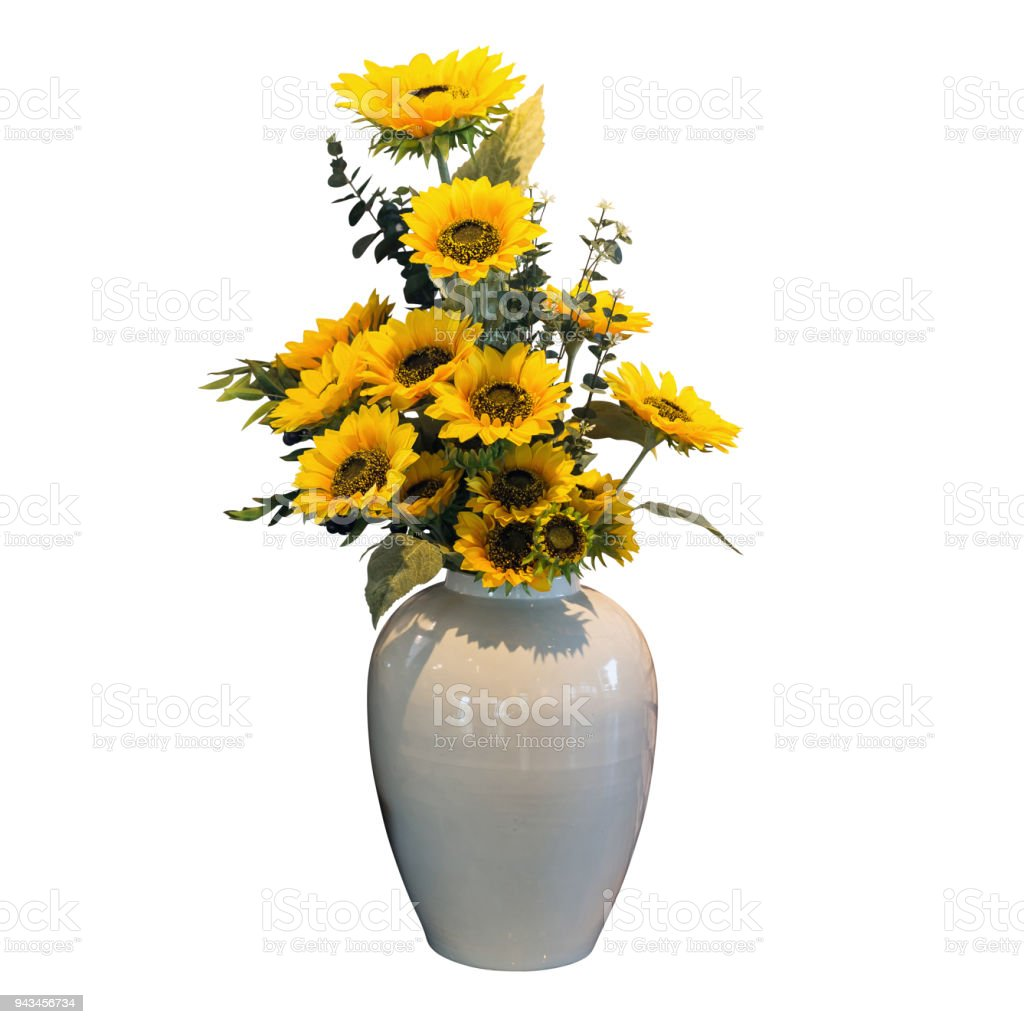 Object Isolated White Flower Vase Stock Photo More Pictures Of