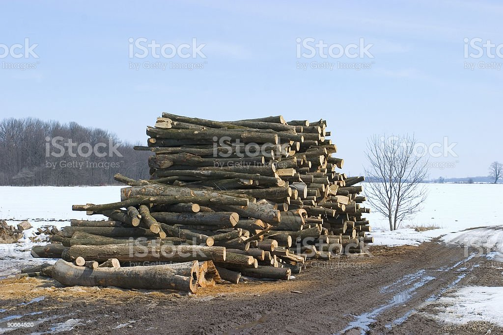 Objects - Deforestation Log Pile #1 royalty-free stock photo