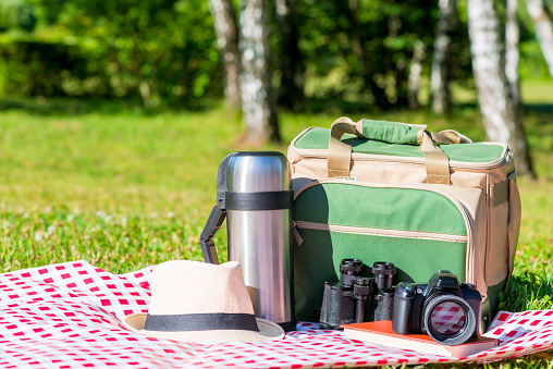 istock objects for recreation and picnic in nature in the park 943649668