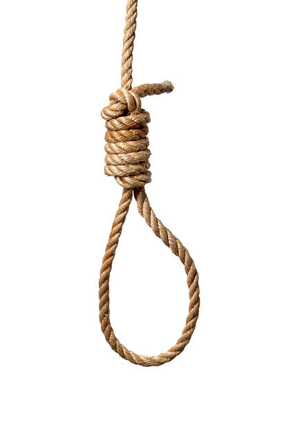 objects: rope with noose - noose stock photos and pictures
