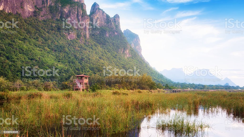 Observation tower in the national park. stock photo