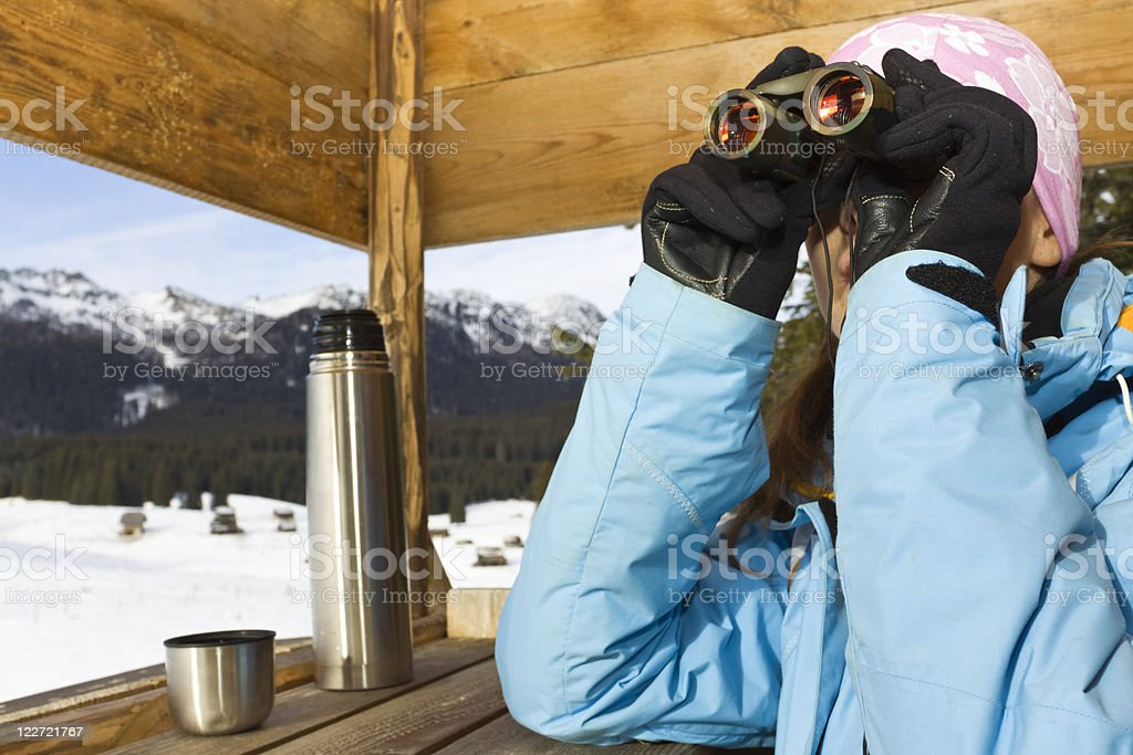 observing stock photo