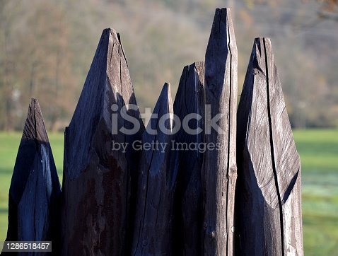 obstacle against enemies from sharp pointed poles on a Slavic fort taken from the Celts. the disadvantage was the danger of igniting such a wall. however, it was cheap and made of available wood