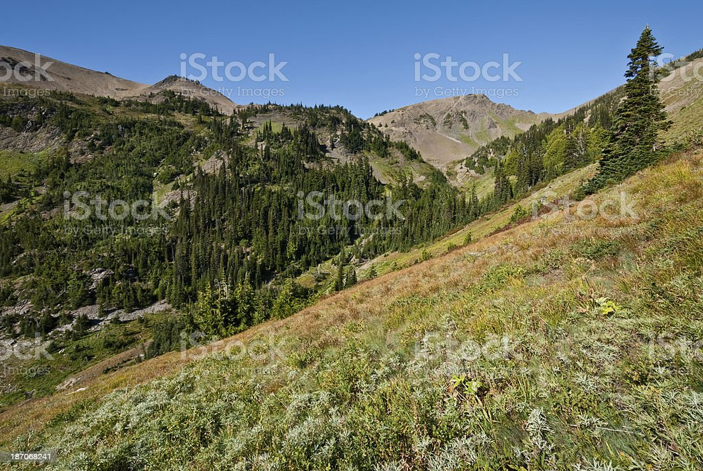 Obstruction Point from Badger Valley royalty-free stock photo