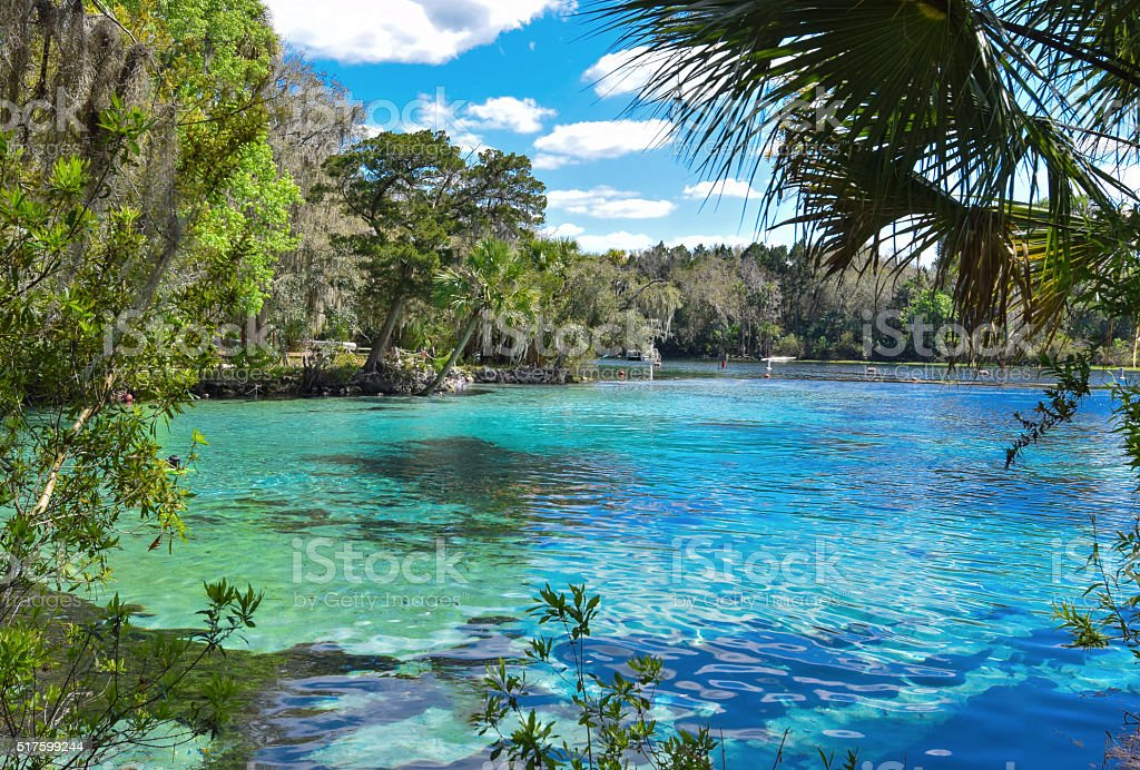 Ocala National Forest - Silver Glen Springs stock photo