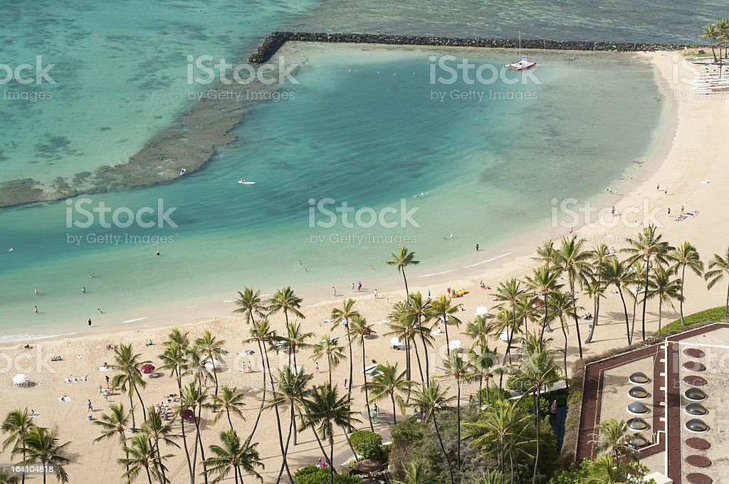 Ocean beach with breakwater and palm trees royalty-free stock photo