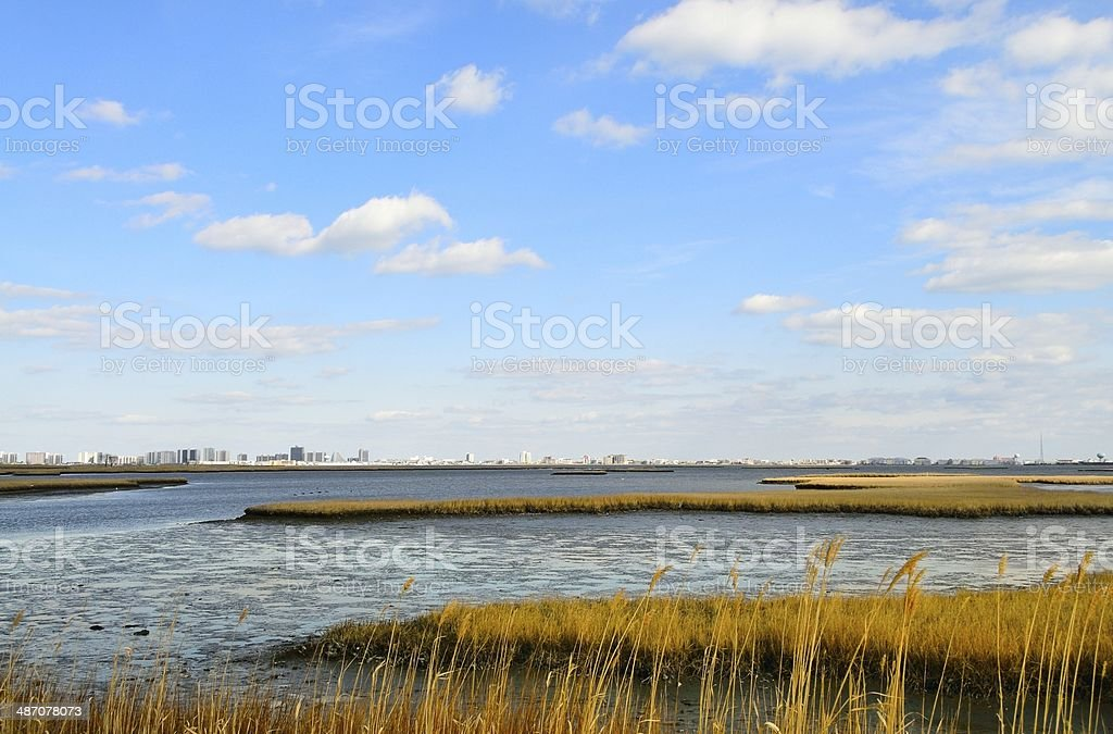 Ocean City From Isle Of Wight stock photo