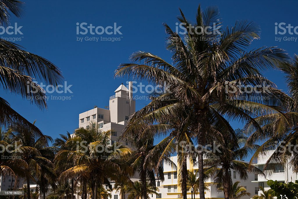 (XXXL) Ocean Drive Morning royalty-free stock photo