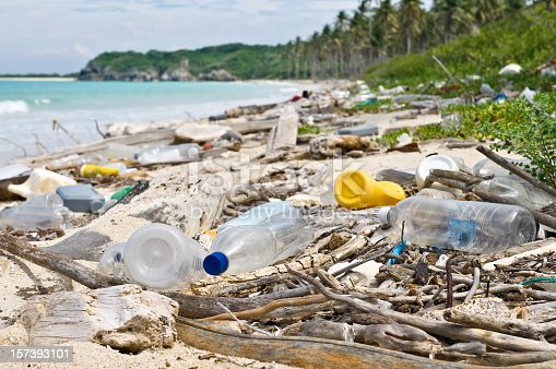 Garbage and pollution on a Tropical beach