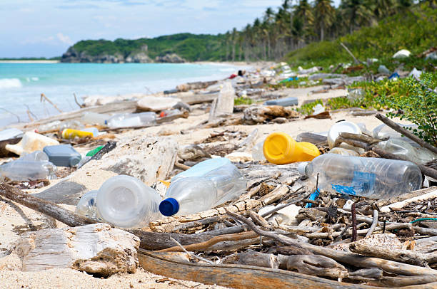 ocean dumping - total pollution on a tropical beach - plastic stock pictures, royalty-free photos & images