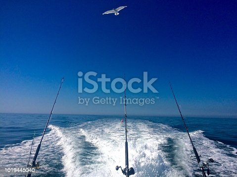istock Ocean Fishing Summer Day on the Open Ocean 1019445040
