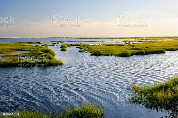 Photo of Ocean Inlet with Marsh Grass