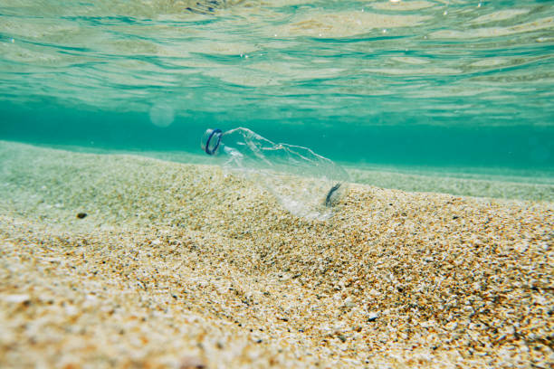 ocean pollution, single use plastic water bottle in the sea. - trash stock photos and pictures
