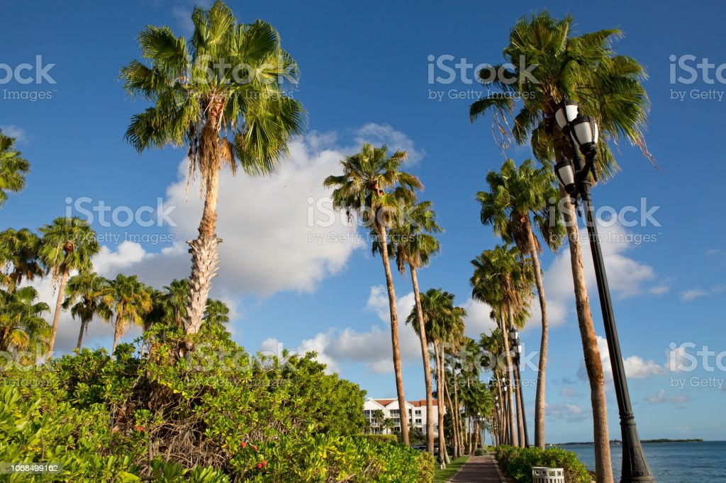 Ocean promenade in Oranjestad Aruba stock photo