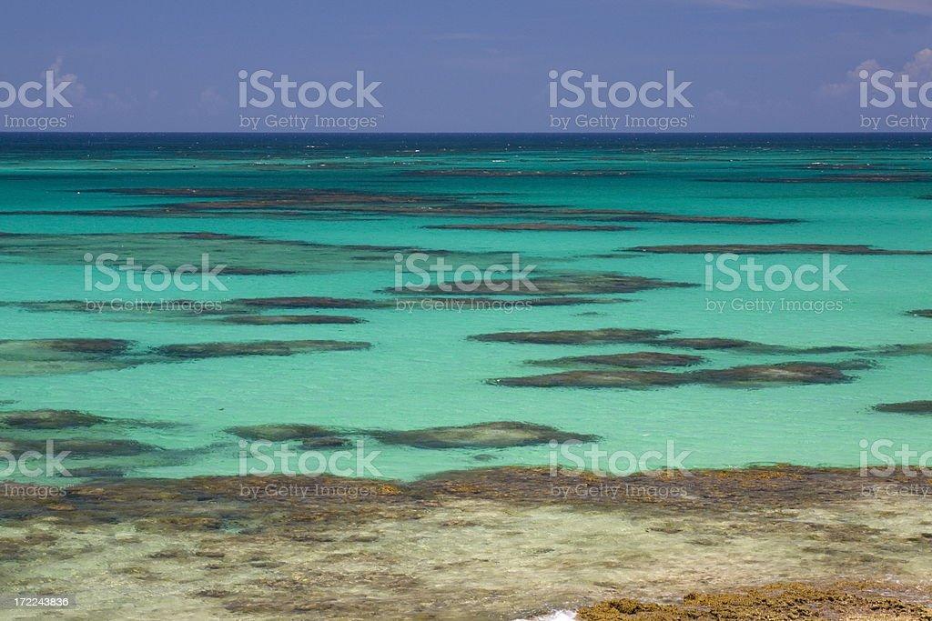 Ocean Reef stock photo
