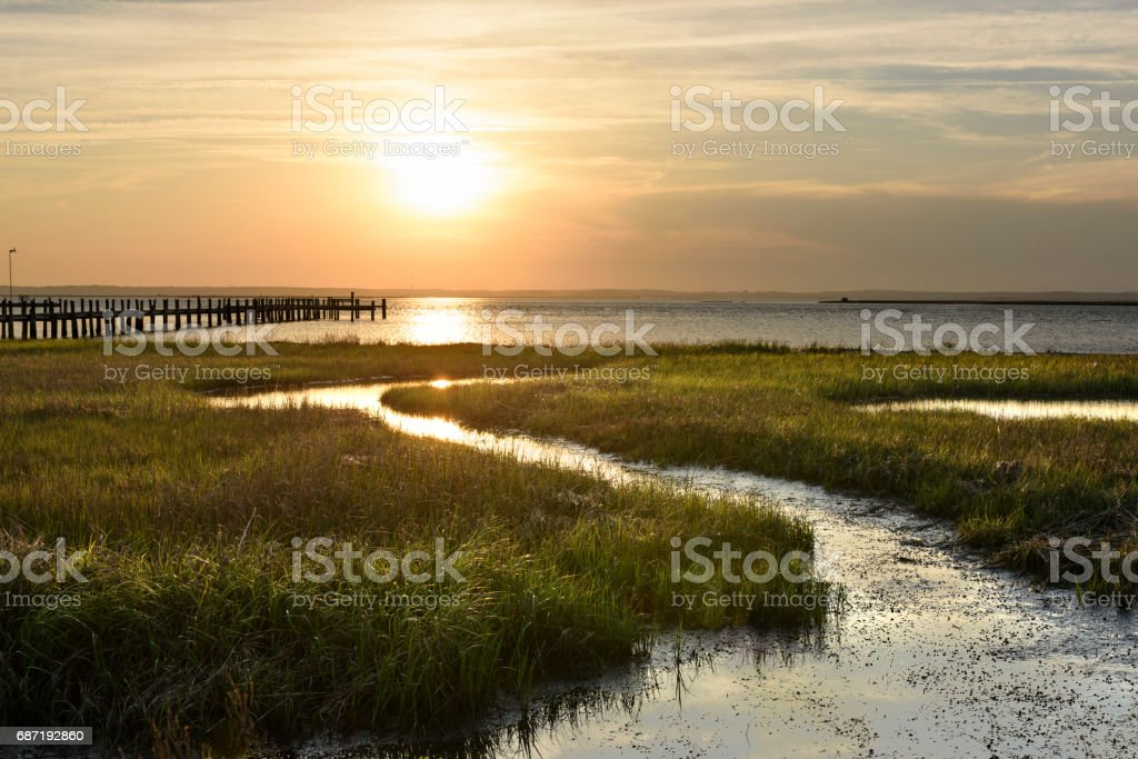 Ocean salt marsh with sea grass and dock at sunset – Foto