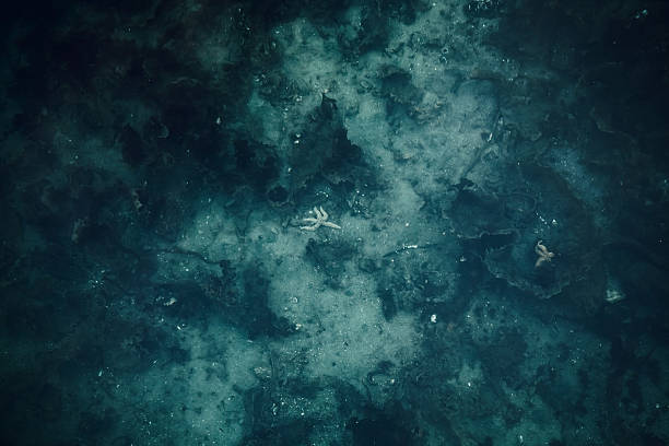 ocean seabed background. dark blue - ocean floor stock photos and pictures