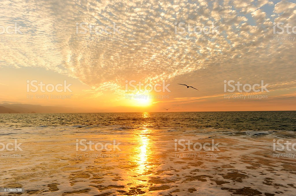 Ocean Sunset stock photo