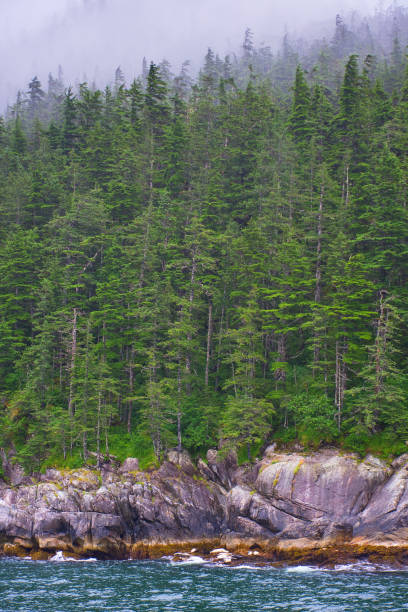 Ocean, trees and pine trees over mountains on the Seward shore in the Gulf of Alaska. Landscape, seascape, portrait, fine art. Alaska: July 28, 2018 stock photo