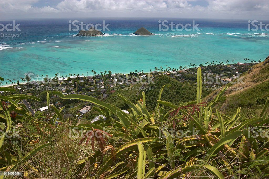 ocean view from Lanikai, Oahu, Hawaii stock photo