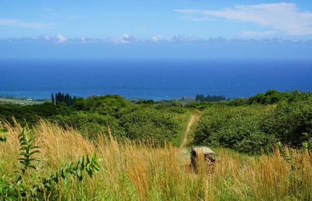 Ocean View in Hawaii stock photo