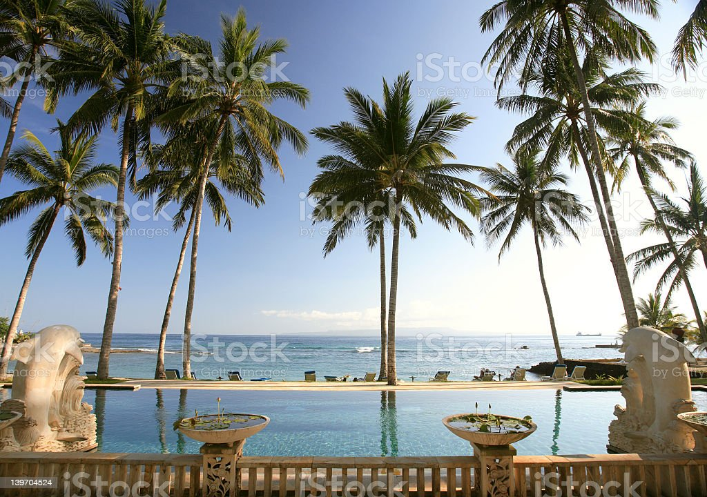 Ocean view of relaxing resort surrounded by big palm trees royalty-free stock photo