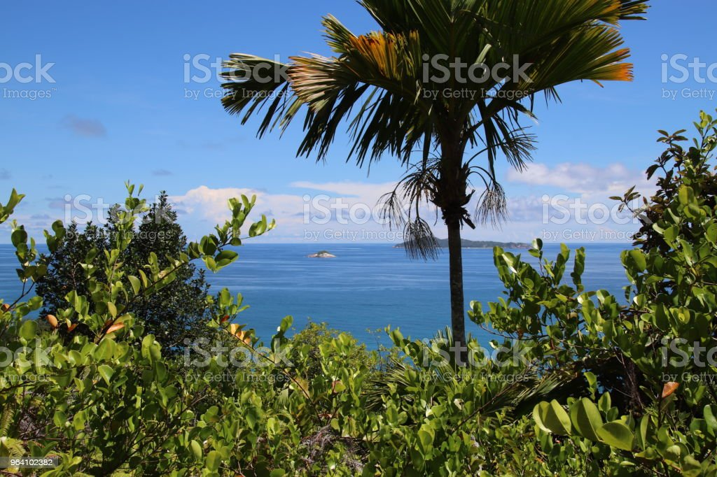 Ocean View To Aride Island Praslin Seychelles Indian Ocean