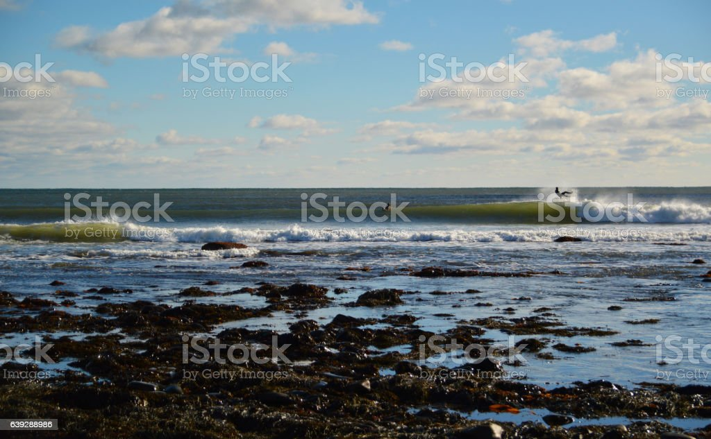 ocean waves breaking sunny day surfers wipout seeweed foreground bohkeh stock photo