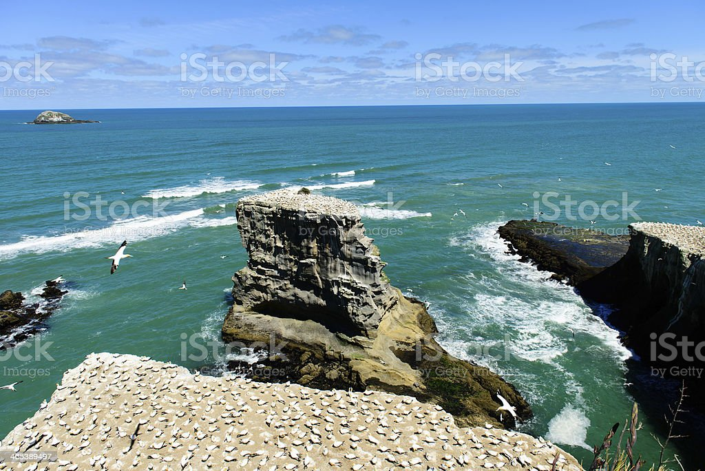 Oceanside Cliffs royalty-free stock photo