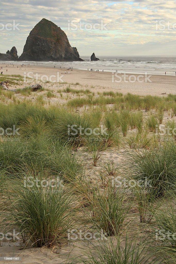 Oceanside stock photo