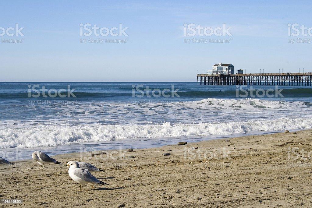 Oceanside Pier royalty-free stock photo