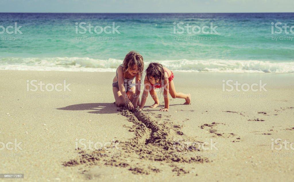 Oceanside Teamwork zbiór zdjęć royalty-free