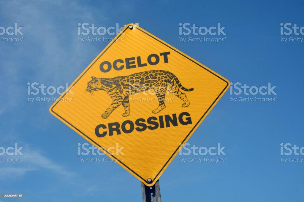Ocelot Crossing road sign stock photo