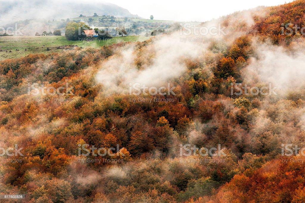 Ochagavia niebla otoño - foto de stock