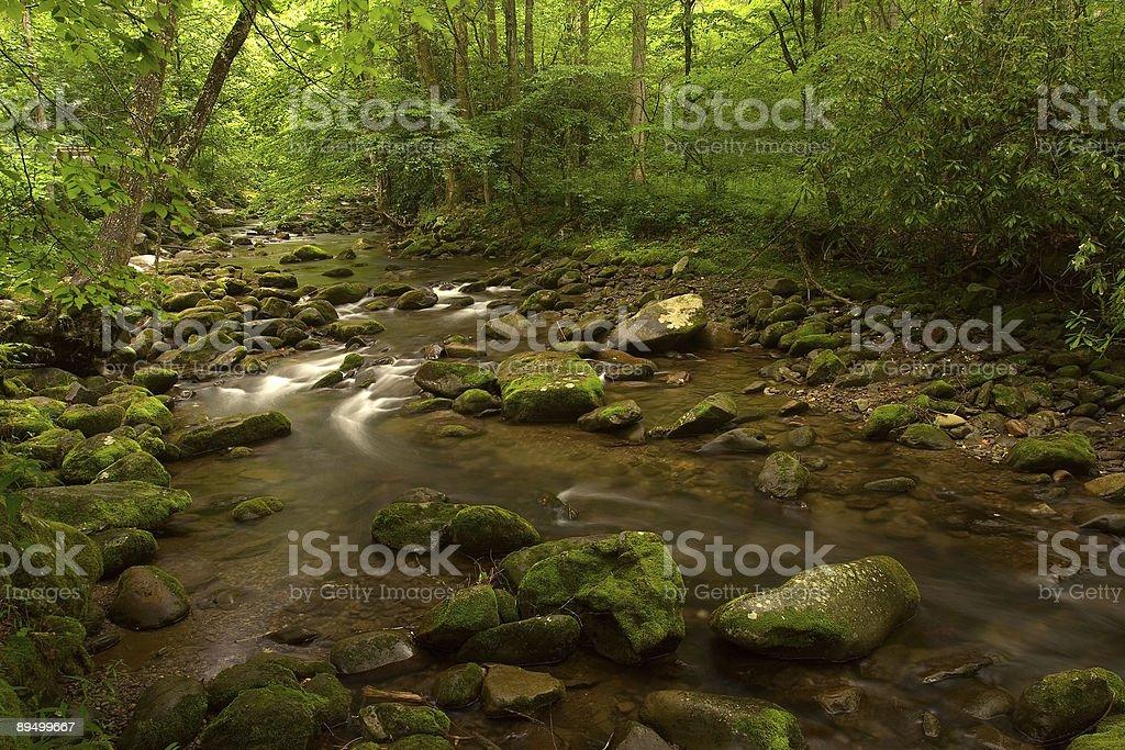 Oconaluftee River royaltyfri bildbanksbilder