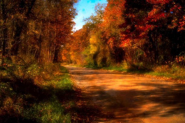 October Country Road stock photo