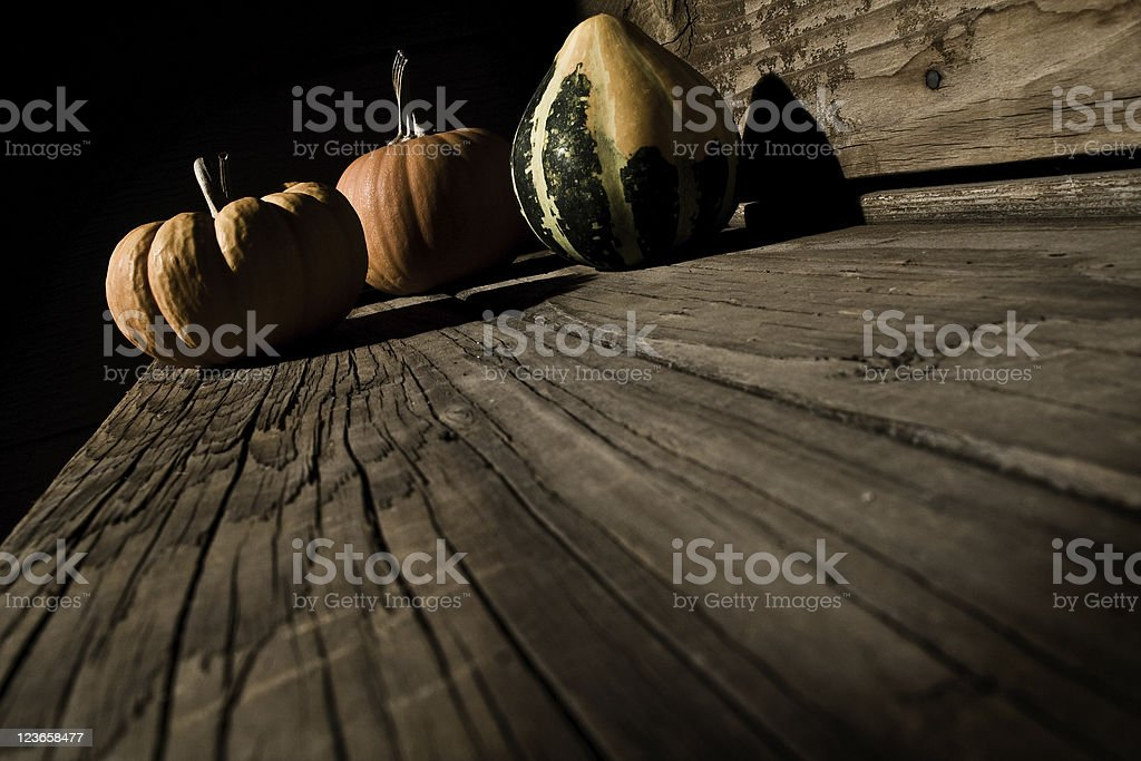 October Gourd royalty-free stock photo