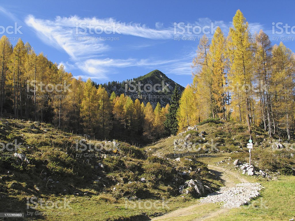 October Hike royalty-free stock photo