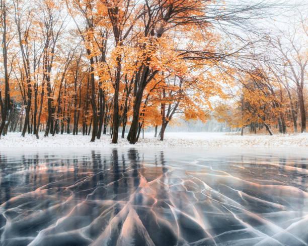 oktober buche bergwald mit ersten schnee und blaue eis und risse auf der oberfläche des eises. winter. ukraine, europa - laub winter stock-fotos und bilder
