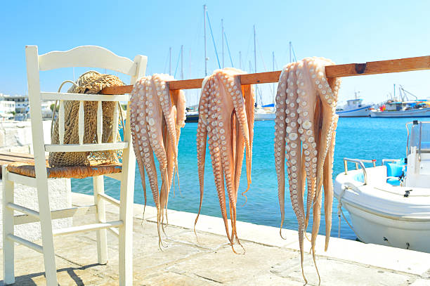 Octopus drying in the sun, Naxos island, Cyclades, Greece stock photo