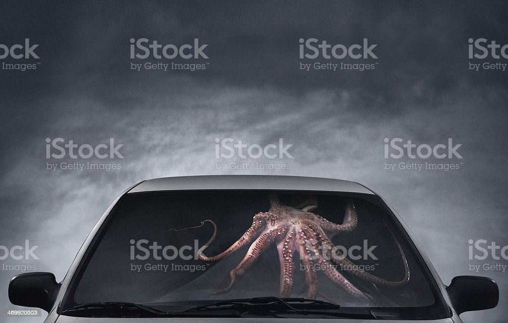 Octopus hijacking a car stock photo